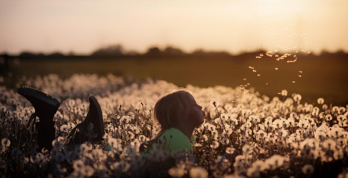 holčička v poli