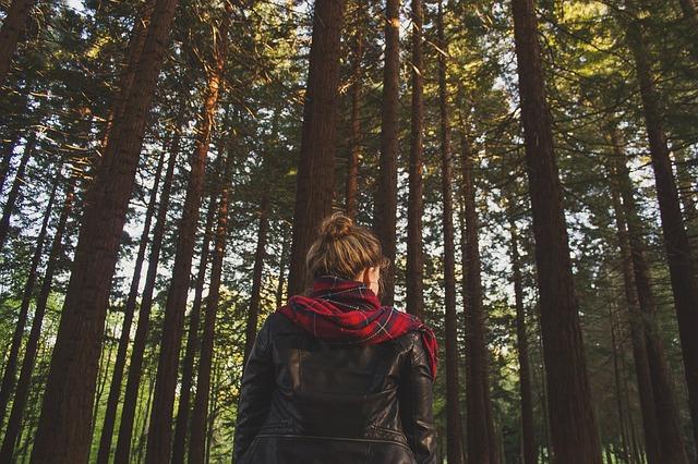 dívka před lesem.jpg