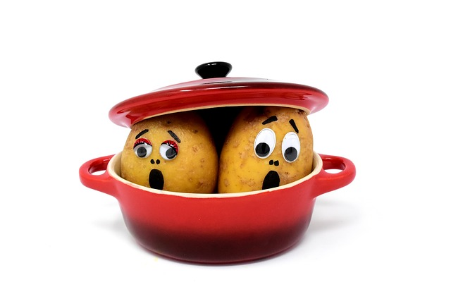 vyděšené brambory